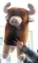 Big Stuffed Buffalo Bison and Bulls
